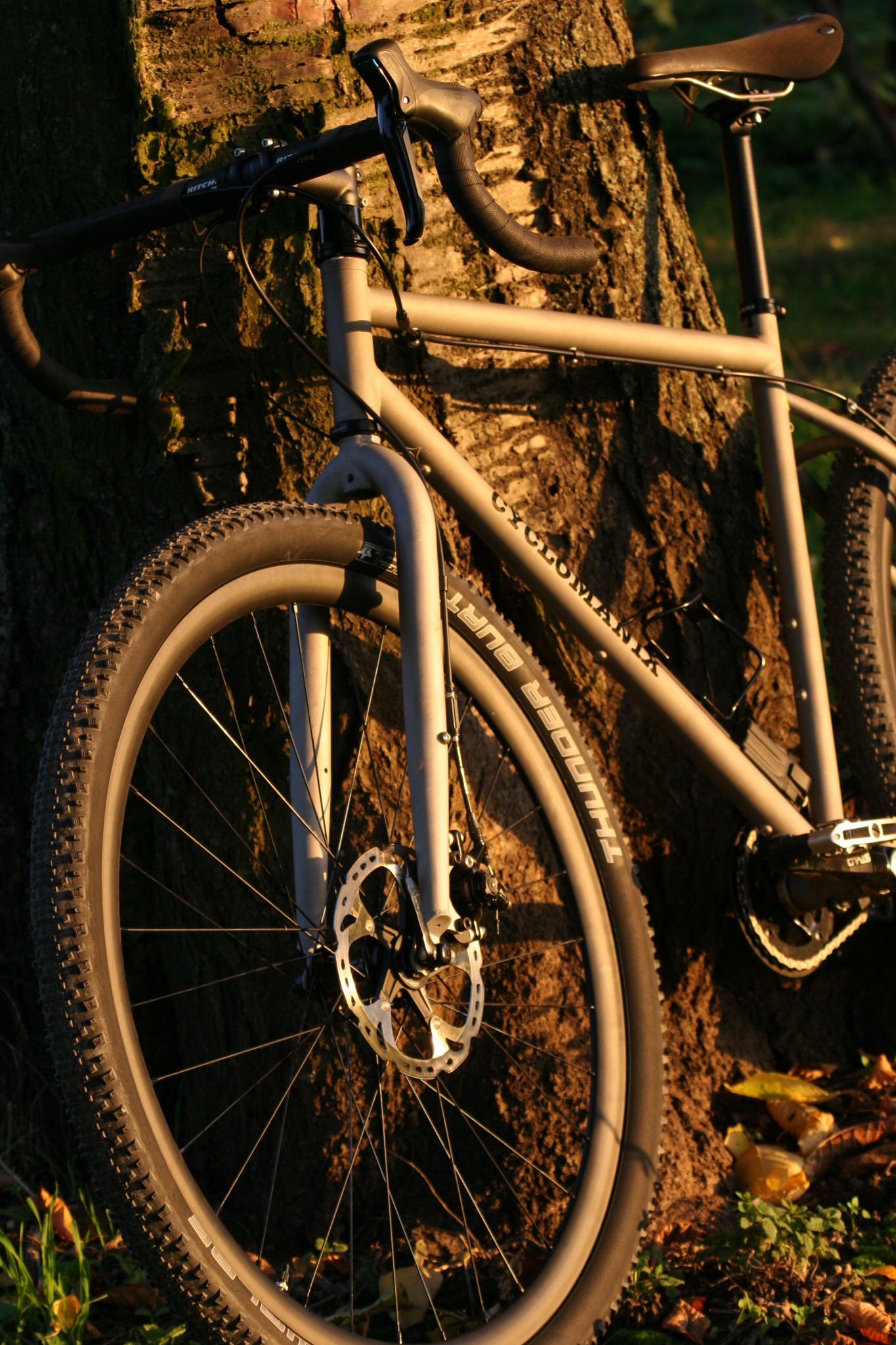 stahl-crossrad-angelehnt-an-baum